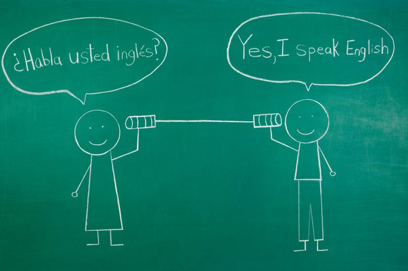 multilingualism or not essay